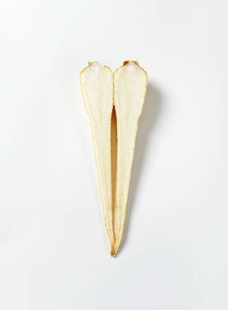 halved: halved parsley root on white background