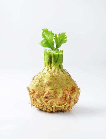 apium graveolens: celery root on white background Stock Photo