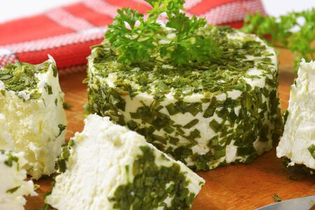 healthy foods: fresh cheese coated in chives and garlic