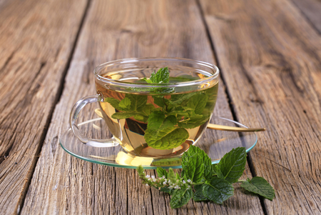 menta: Hojas de té de menta de menta fresca