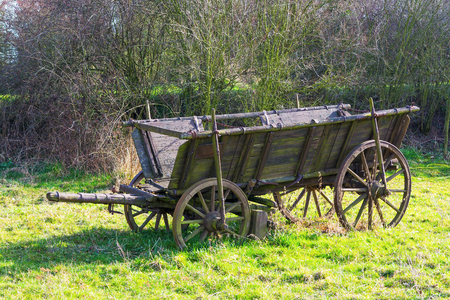 horse drawn: old wooden horse drawn wagon standing on grass Stock Photo