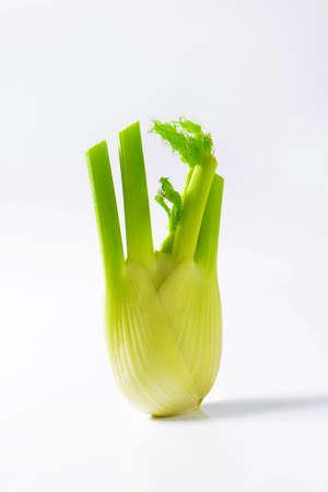 finocchio: bulbo di finocchio fresco su sfondo bianco