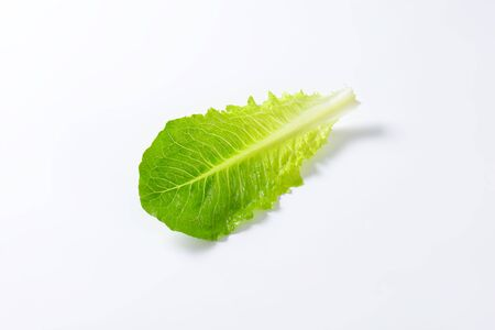 romaine: leaf of romaine lettuce on white background