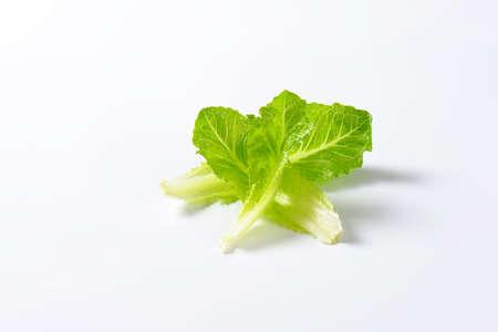romaine lettuce: leaves of romaine lettuce on white background Stock Photo