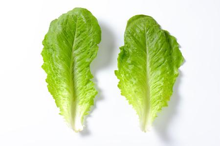 lechugas: dos hojas de lechuga romana en el fondo blanco