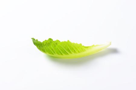 romaine lettuce: leaf of romaine lettuce on white background