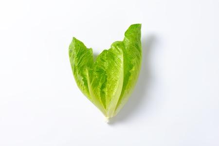 romaine lettuce: heart of romaine lettuce on white background Stock Photo