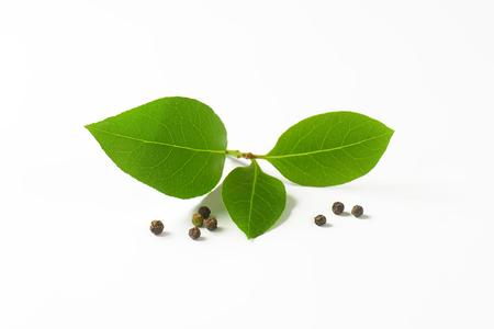 peppercorns: Fresh bay leaves and black peppercorns on white background