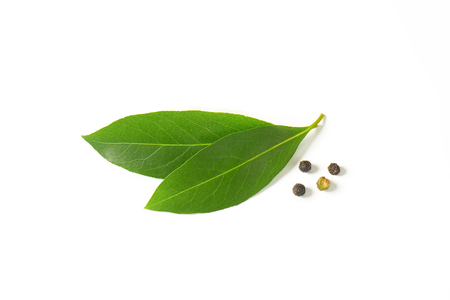 Fresh bay leaves and black peppercorns on white background