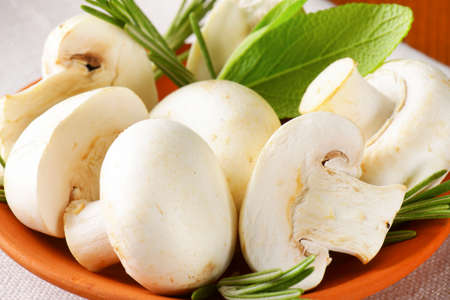 button mushrooms: Fresh button mushrooms and culinary herbs in terracotta bowl Stock Photo