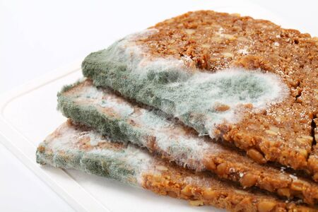 bread mold: Slices of brown bread covered with mold