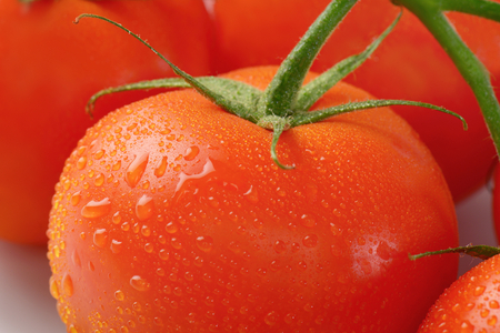 washed: detail of freshly washed tomatoes Stock Photo