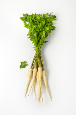 bunch of fresh parsley roots on white background