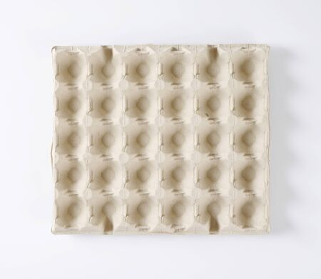 thirty: empty egg tray to store thirty eggs Stock Photo