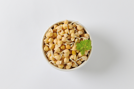 sprouted: Bowl of sprouted chick peas Stock Photo