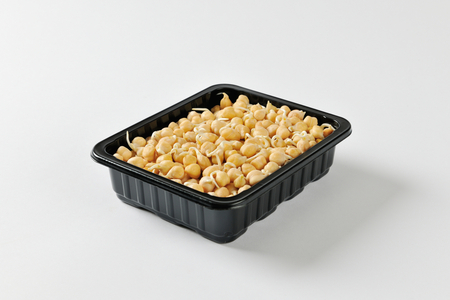 sprouted: Sprouted chickpeas black plastic food container