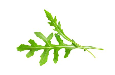 roquette: Closeup of two rocket leaves