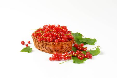 currants: Fresh picked red currants in wicker bowl
