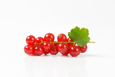 sprig: Sprig of red currant berries on white background