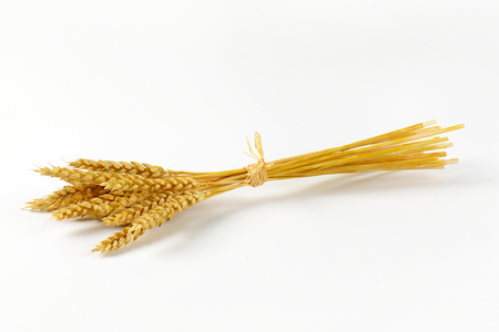 stalk: bunch of ripe grain ears on white background