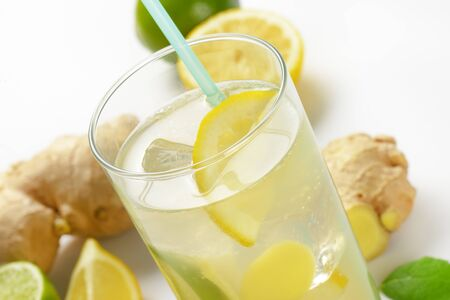 ale: glass of homemade ginger ale with lemon, lime and ice