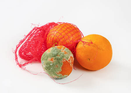 uneatable: ripe oranges in net bag and rotten orange next to them