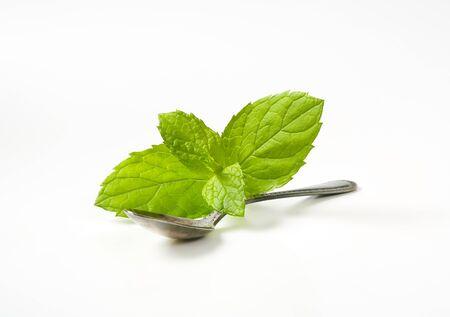 lemon balm: leaves of lemon balm and teaspoon on white background