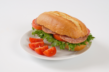 crusty roll sandwich with salami on white plate Stock Photo