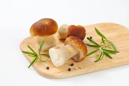 fresh porcini mushrooms, rosemary and peppercorns on wooden cutting board