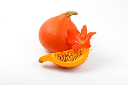 orange pumpkins and hibiscus flower on white background Stock Photo