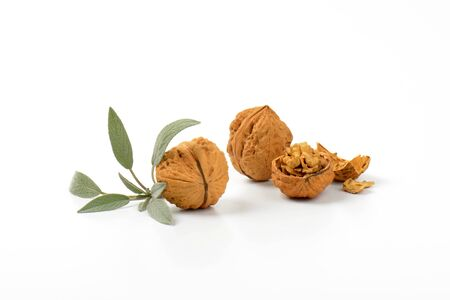 nutshells: walnuts and sprig of fresh sage on white background