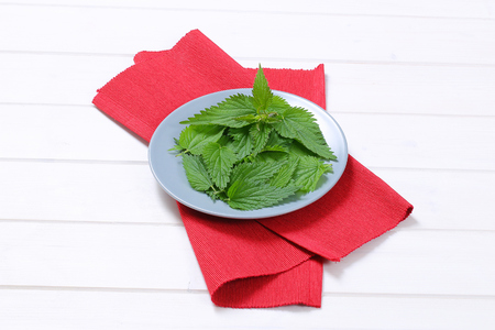 plate of fresh nettle leaves on red place mat Stock Photo