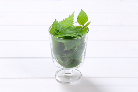glass of fresh nettle leaves on white wooden background