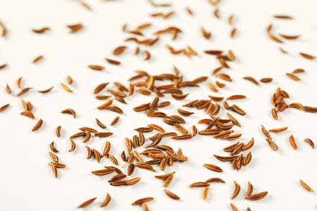 fingerful of caraway seeds on white background - detail