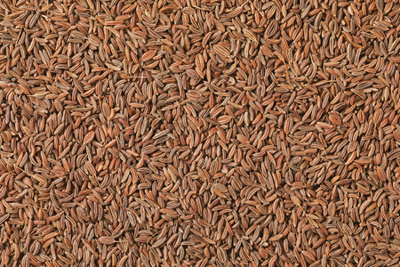 caraway seeds background, overhead view