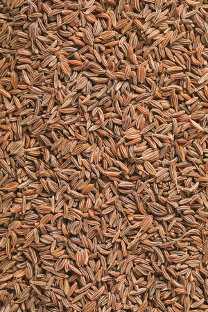 caraway seeds background, full frame