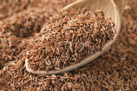 spoon of caraway seeds - full frame 스톡 콘텐츠