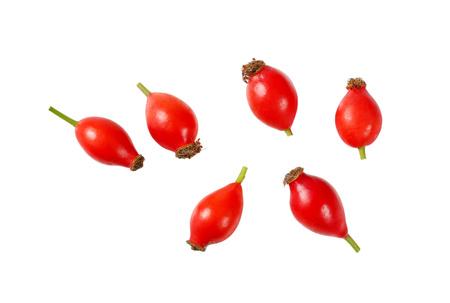 group of rose hips on white background Standard-Bild