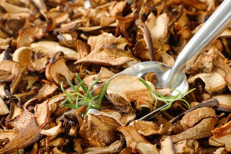 scoop of dried mushrooms on mushrooms background - close up