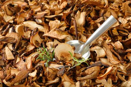 scoop of dried mushrooms on mushrooms background