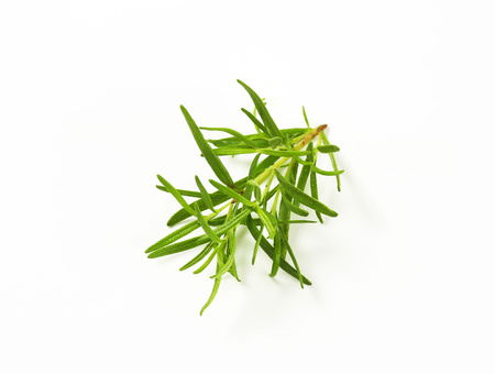 Fresh rosemary on white background Reklamní fotografie
