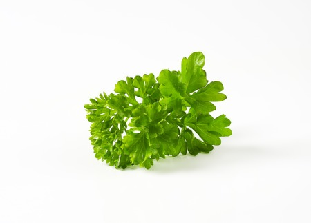 Fresh parsley sprigs on white background
