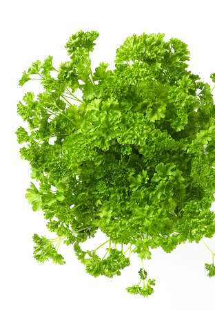 Clumps of fresh parsley on white background Stok Fotoğraf