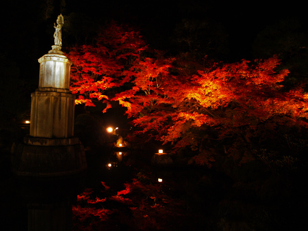 Red maple and statue at a temple in Kyoto, Japan
