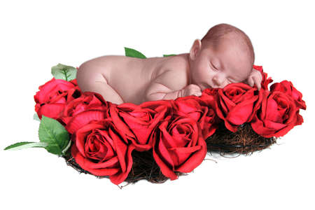 Infant Baby in Fantasy Valentine Rose Portrait photo