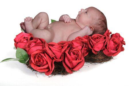 Fantasy Portrait Infant in Valentine Red Rose Wreath photo