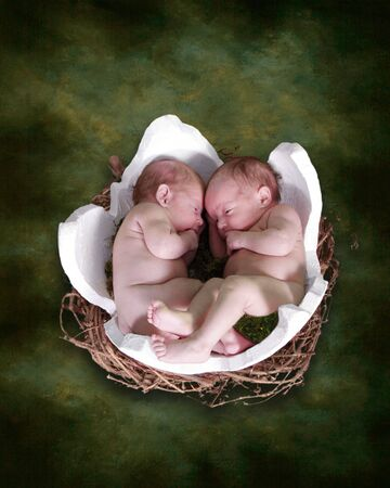 Two Baby Infants in Fantasy Bird Egg Nest photo