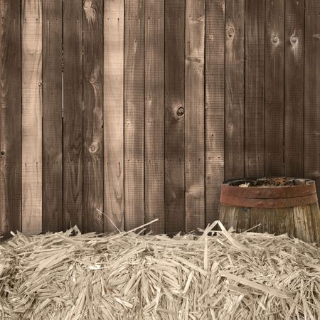 country: Studio Background Backdrop Western Theme