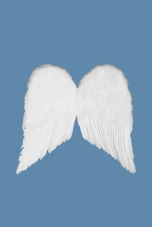 white feather: Isolated White Feather Angel Wings To Drag and Drop