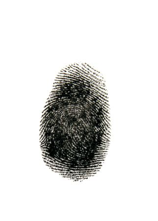 Single black fingerprint on white Фото со стока